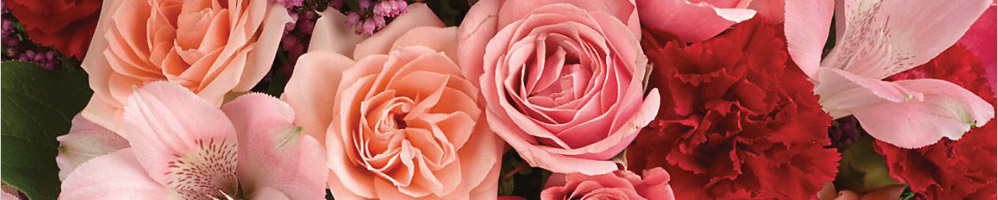 Earn 5.0% Cash Back from Ebates.ca with Teleflora Flowers Coupons, Promo Codes